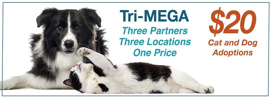 Tri-MEGA Banner.jpg