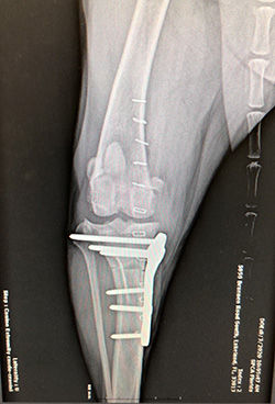 Radiology 1_250 wide.jpg