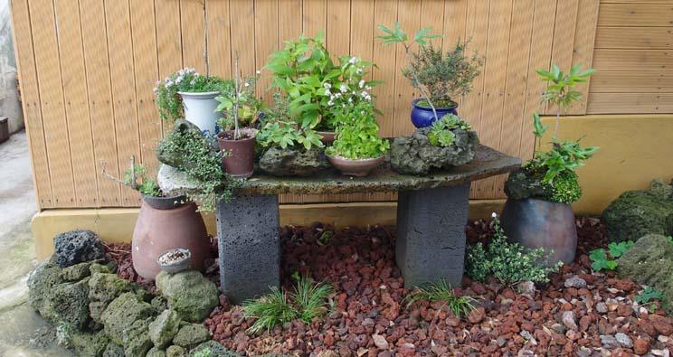 야생화 정원