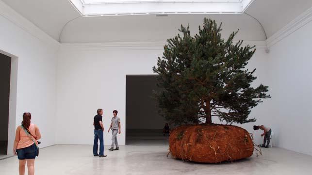 나무의 미학