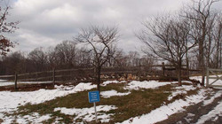 스톤 반즈 센터 (Stone Barns Center for Foo