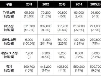 [지식정보] 무점포 소매업 2016년 전망