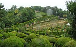 가을 정원