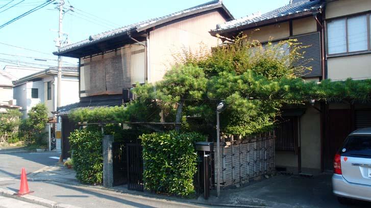일본 가정의 정원