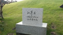 장쩌민의 방문