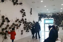 개미의 세계