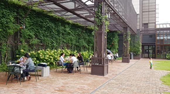 루프탑 정원, 옥상 정원