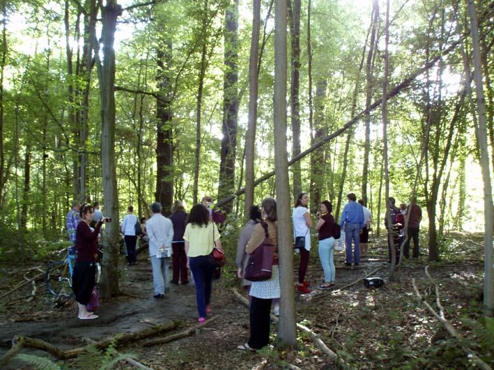 카셀 도큐멘타, 숲속의 음악