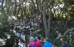 납읍리 금산공원