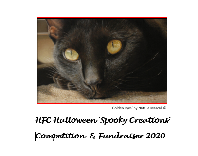 Enter our Halloween 'Spooky Creations' Competition
