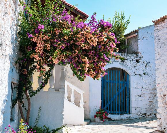 village flowers gate.jpg