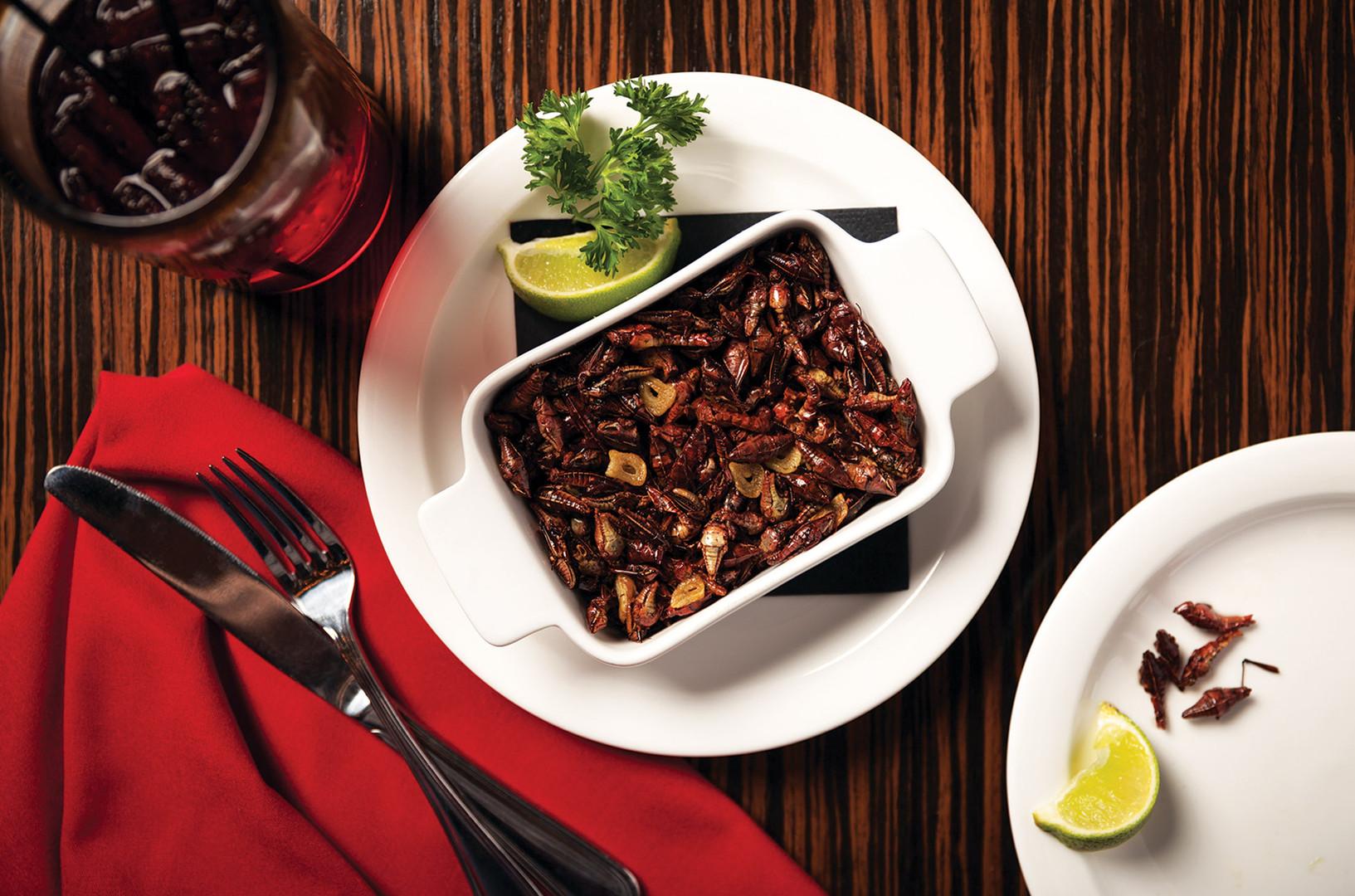 chapulin platillo gourmet 1.jpg