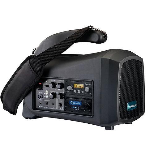 Haut-parleur portatif DL-550 avec microphone sans-fil