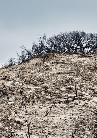 hillside dune