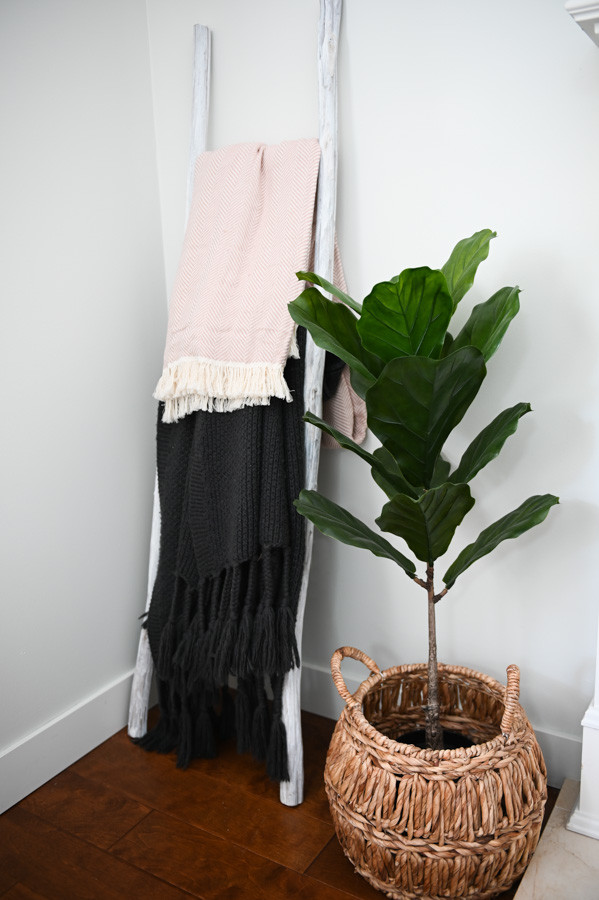 Faux Fiddle plant and throw blankets