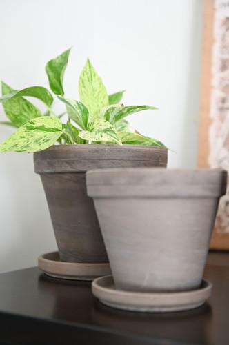 Grey terracotta planters