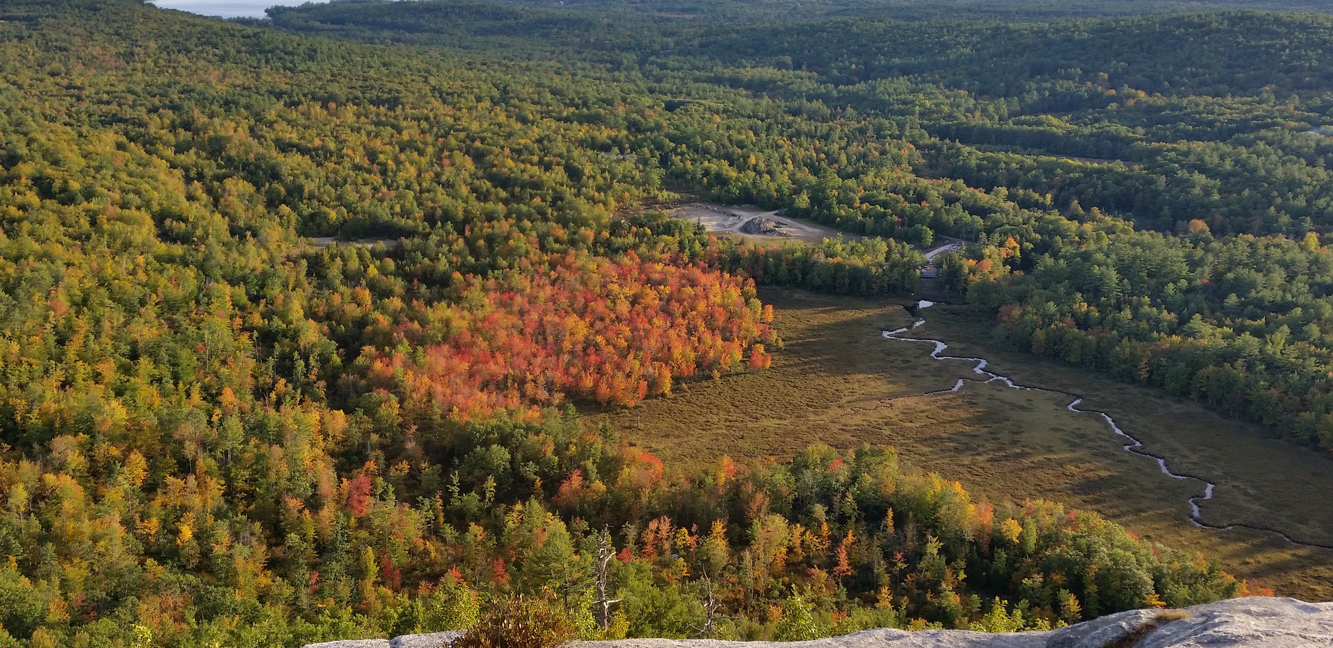 Early Foliage from Hawk Mountain