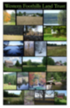 2012 easements.jpg