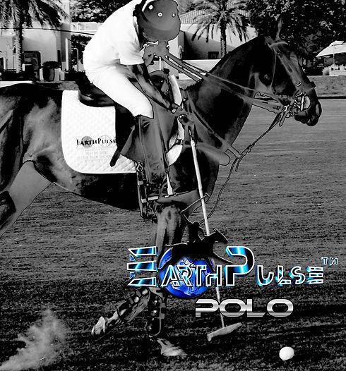ep-polo-fine.jpg