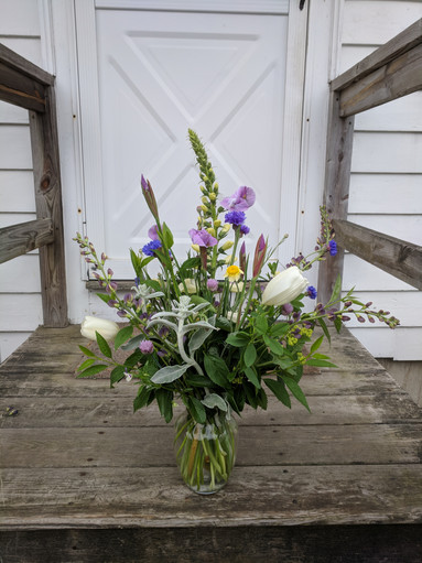 Iris, Baptisia, Foxglove, Tulip