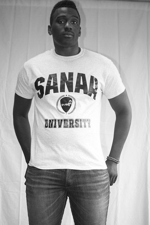 Sanaa University