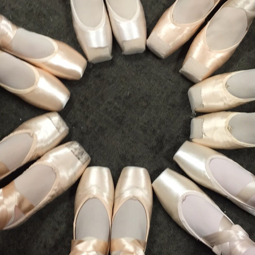 pointe shoe circle.jpg