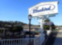 Bluebird Inn Front.jpg