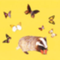 Badger-Butterfly-Card-Chimps-Tea-Party.j