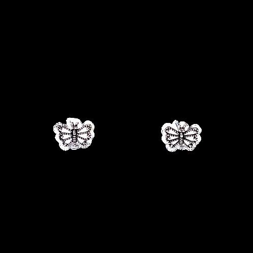 Silberohrstecker Schmetterling