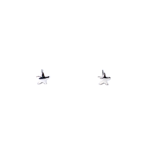 Silberohrstecker Stern