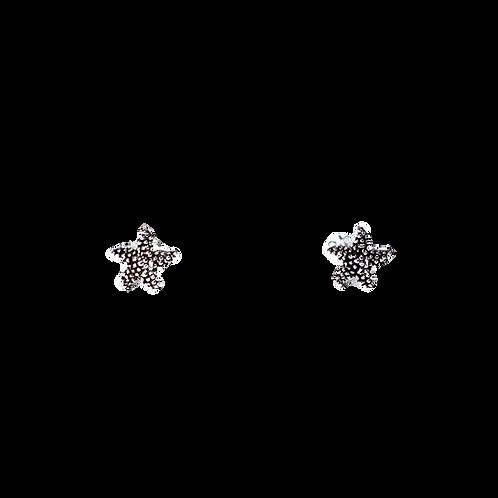 Silberohrstecker Seestern