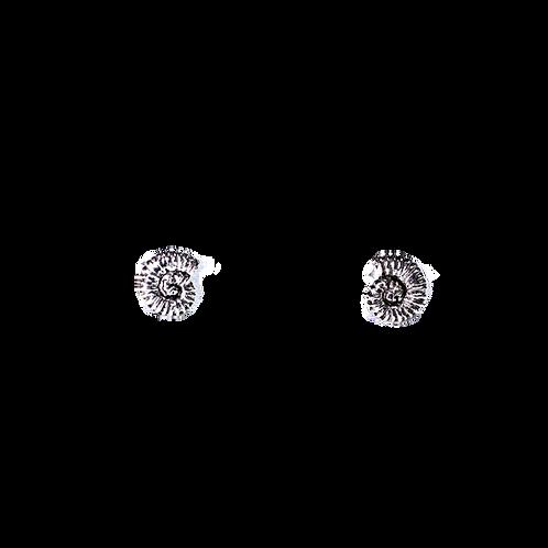 Silberohrstecker Ammonit