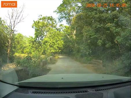 Jungle Safari en route The Tiger Groove, Jim Corbett