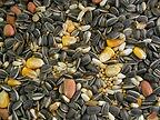Seed mix.jpg