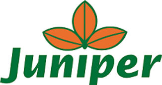 Walk2021_Juniper-Logo.jpg