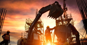 Construction: Top Tips to protect your plant