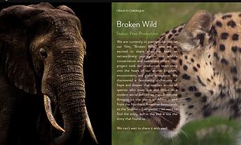 Broken Wild