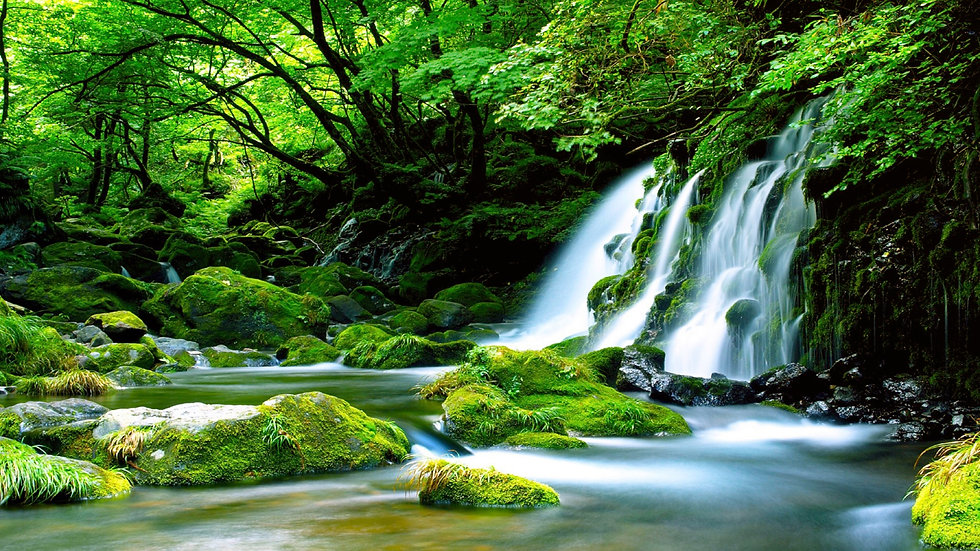 Green-Waterfall-River-rocks-covered-with