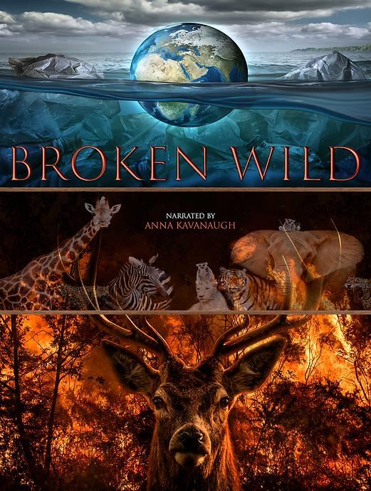 BrokenWildProductionArt.png