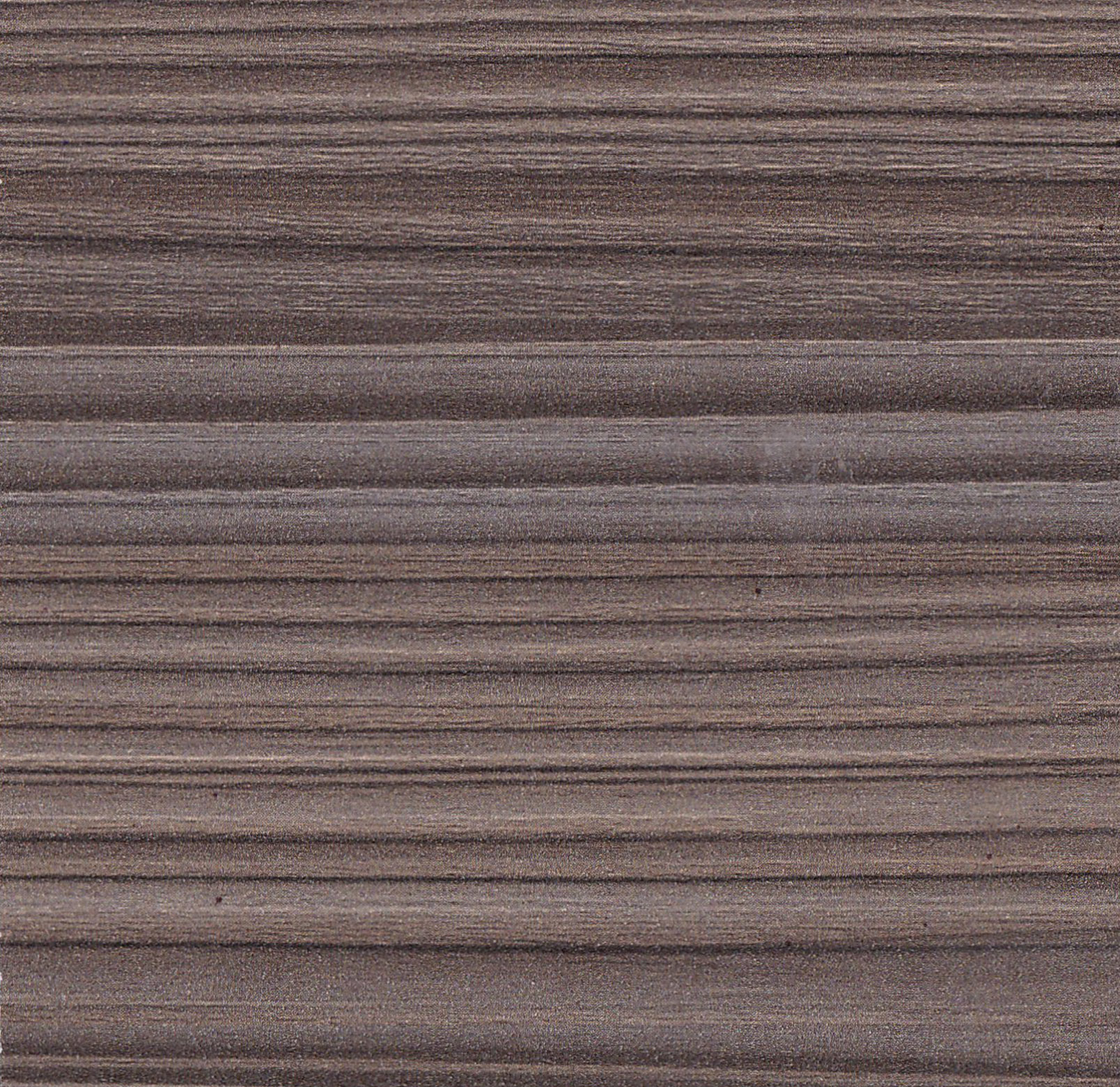Gray Cedar