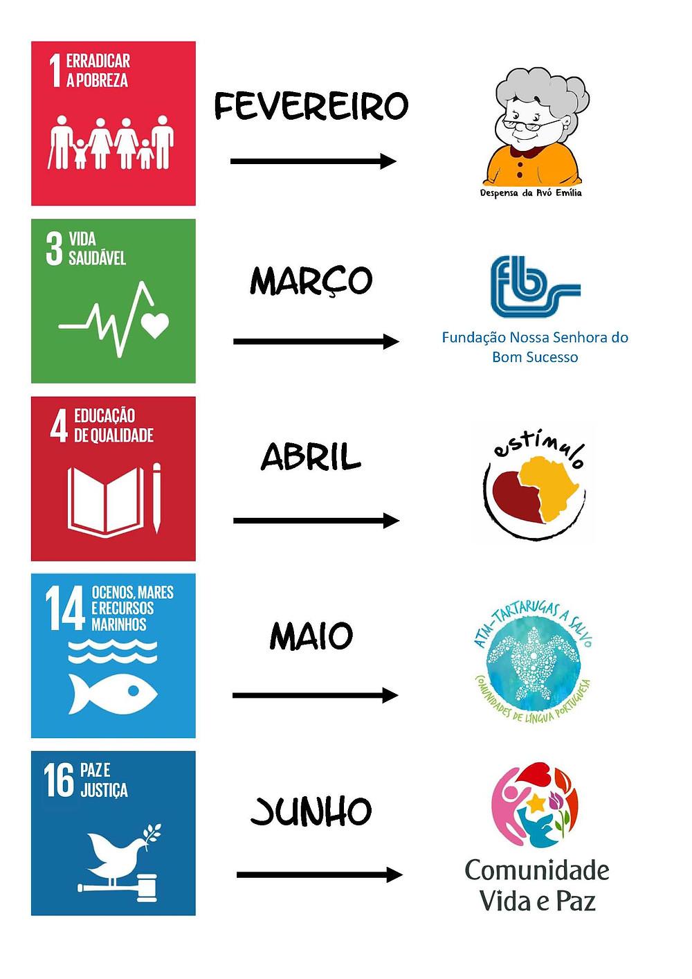 Depois de escolhidos os 5 ODS escolhemos as 5 Organizações com quem trabalharemos. Contamos com a sua colaboração!