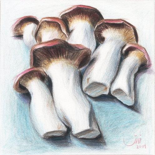 No.89, Giant Mushrooms