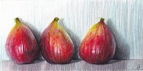 No.179, Figs