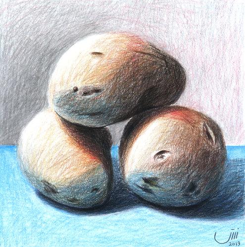NO.154, Potatoes