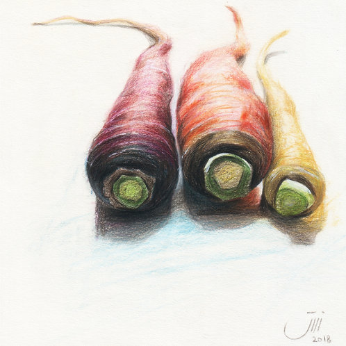 NO.127, Colorful Carrots