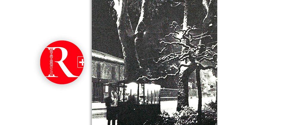 Piazza Indipendenza - baracchetta del caldarrostaio