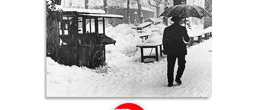 Lugano 1949 - grande nevicata di fine gennaio