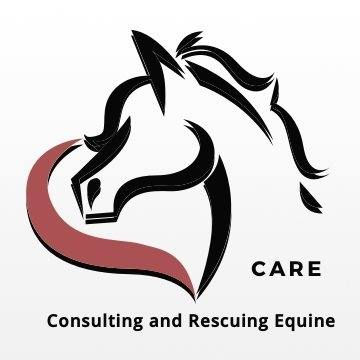 Consulting & Rescuing Equines.jpg