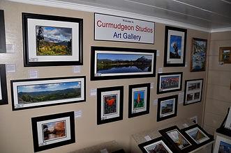Curmudgeon Studios Art Gallery.jpg