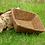 Thumbnail: Coir Grow Trays